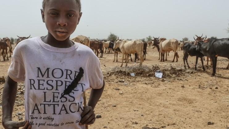 """Un enfant regarde un troupeau de dos. Sur son t-shirt est écrit : """" MORE RESPECT LESS ATTACK"""""""