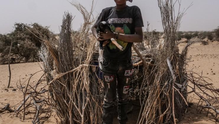 Ousmane, jeune éleveur « J'ai essaye d'aller à l'école mais je n'y pas resté longtemps. Quand je serai grand, je serai éleveur comme papa. Voici mon premier agneau, il s'appelle petit Poura »