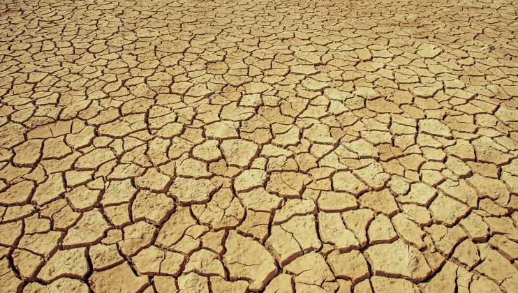 The land in Fao is so dry that it is cracking. Mike Mustafa Khalaf / ICRC